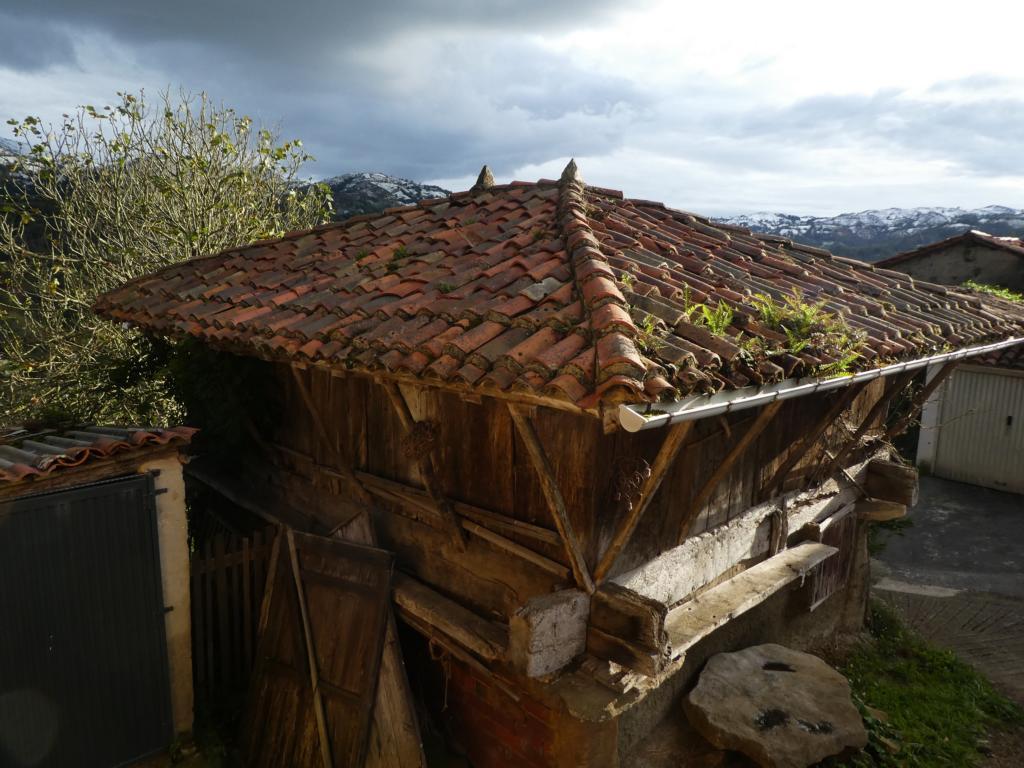 Workaway in Asturien
